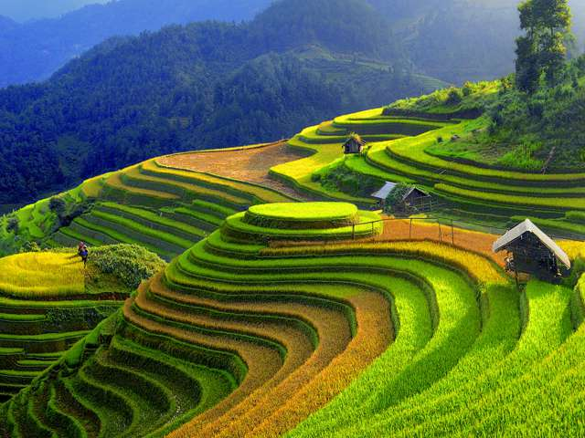 : A stunning landscape in the mountainous Vietnam