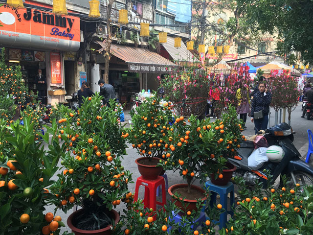 Year-end local markets in Hanoi for a New Year