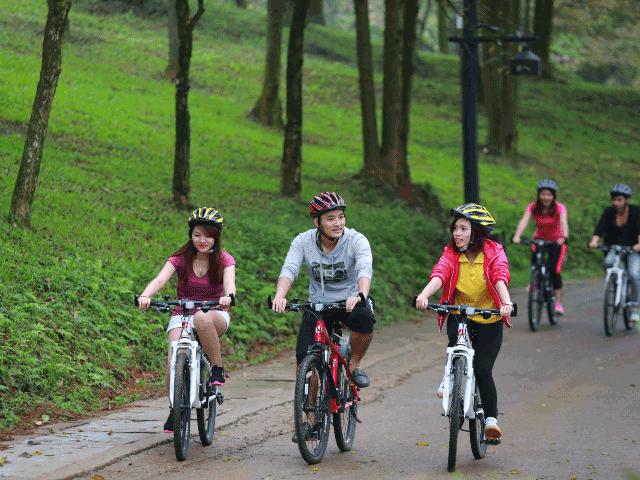 Vietnam Wellness Tour