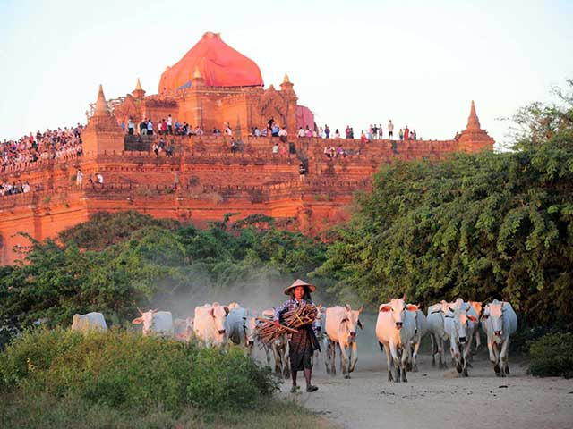 Myanmar at a glance