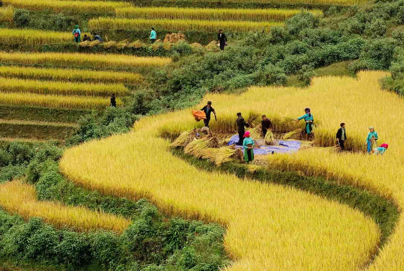 EXPLORE NORTHERN VIETNAM