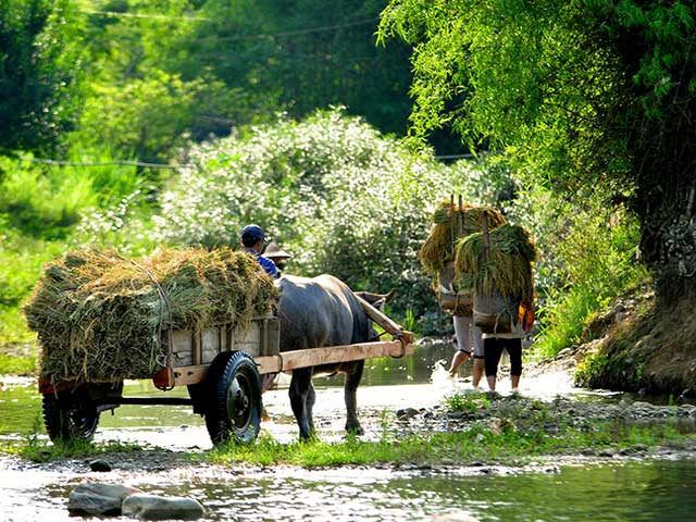 Wellness in Indochina